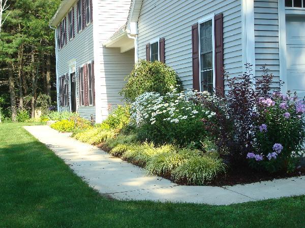 gardens - flower beds, Front flower beds garden