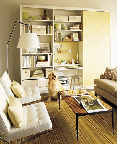 dens/libraries/offices - white tufted leather Barcelona chairs mid-century modern wood slat coffee table chrome floor lamp dog bookshelf gree yellow striped rug gray sofa gray walls yellow pillows