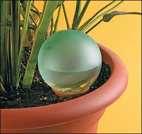 Plant Minder Water Bulb