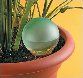 Plant Minder Water Bulb