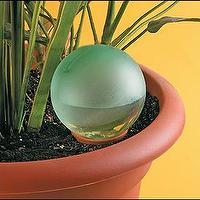 Decor/Accessories - Plant Minder Water Bulb - plant, self watering, bulb