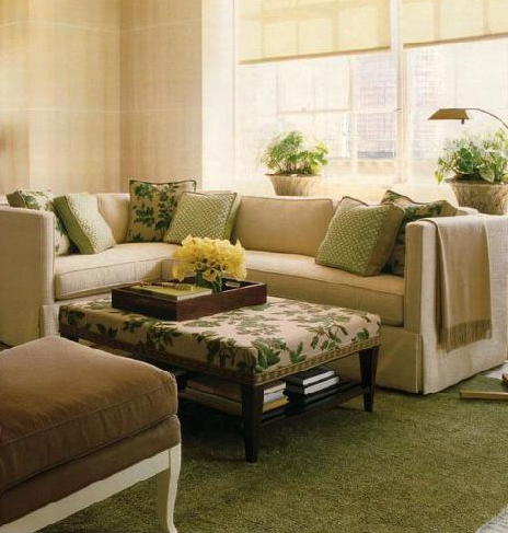 The hand me down house july 2011 for Green and beige living room ideas