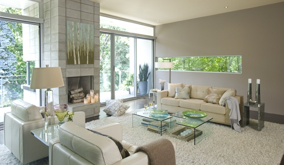 Gray Paint Contemporary Living Room Benjamin Moore