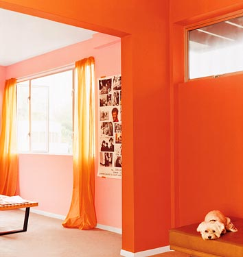 miscellaneous, Benjamin Moore Jeweled Peach