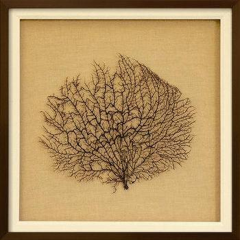Art/Wall Decor - Sea Fan on Linen I Dimensional Product at Art.com - art