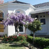 gardens - home exterior, garden, trees,  My SIL gorgeous garden in Melbourne, Australia  DH and his brother helped build this house in the early