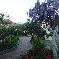 gardens - trees, brick walkway, brick pavers,  My SIL gorgeous garden   Melbourne, Australia!
