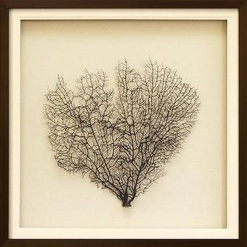Art/Wall Decor - Sea Fan on Linen II Dimensional Product at Art.com - sea fan art