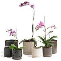 Decor/Accessories - Cylinder Pots - Smith & Hawken - planters, pots