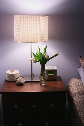 miscellaneous - Benjamin Moore - English Hyacinth flickr find