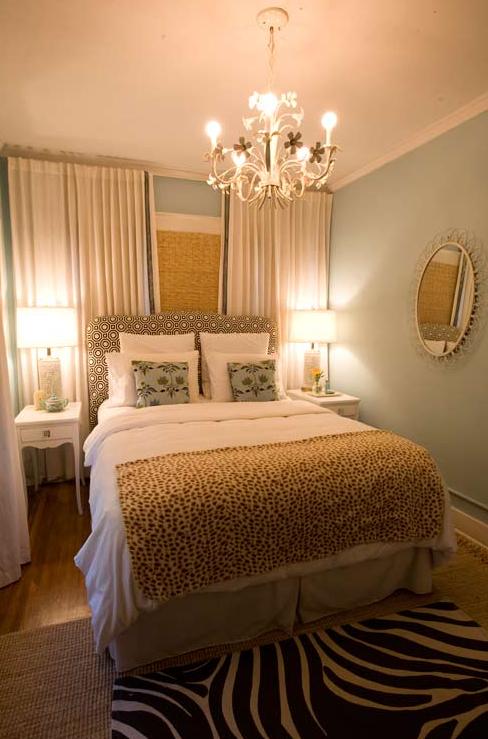 chandelier zebra print rug