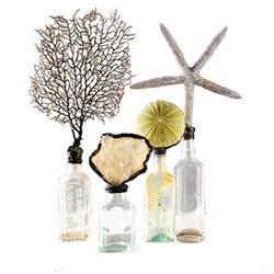 Decor/Accessories - Message on a Bottle - set of 3 | Wisteria - bottles, shells