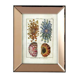 The Well Appointed House by Melissa Hawks. Set of Six Marine Life Wall Art