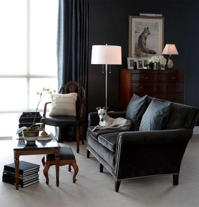 Charcoal gray sofa transitional living room for Charcoal sofa living room ideas
