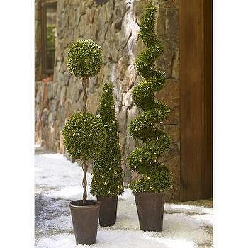 Decor/Accessories - Lit Boxwood Topiary | Pottery Barn - lit, boxwood, topiary