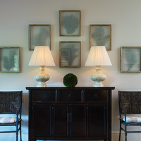 Ken Gemes Interiors - entrances/foyers - blue, seafan, sea fan, art gallery, asian, black, console, table, woven, chairs, sea fan, seafan, sea fan coral, seafan coral, framed sea fan, framed seafan, frames sea fan coral, framed seafan coral, sea fan art, seafan art, framed sea fan art, framed seafan art,