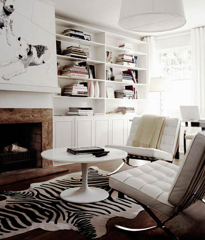 Black and white zebra rug contemporary living room for Living room ideas with zebra rug
