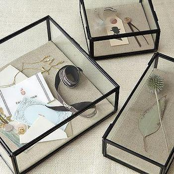 Decor/Accessories - Glass Shadow Boxes | west elm - glass, shadow, boxes