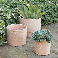 Decor/Accessories - Terracotta Cylinder Planters | west elm - terracotta, cylinder, planters
