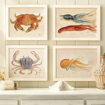 Art/Wall Decor - Ocean Life Water Color Prints by Kolene Spicher - Numbered and Signed Prints - art, ocean life, water color, prints