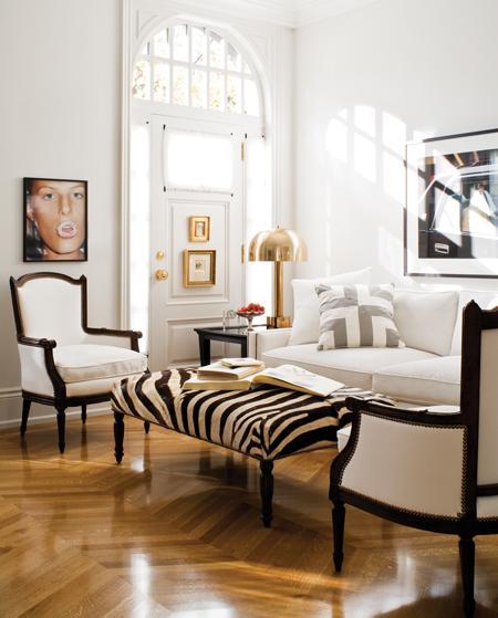 Zebra Bench Transitional Living Room Farrow Ball