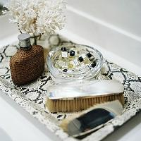 Lonny Magazine - closets - mini-cologne, bottles, brushes, Python Tray,  Faux python tray, brushes and mini-cologne bottles.