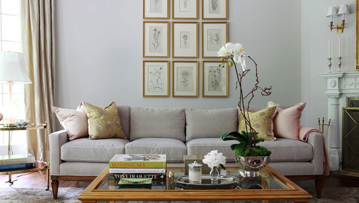 Light Gray Sofa Transitional Living Room Morgan
