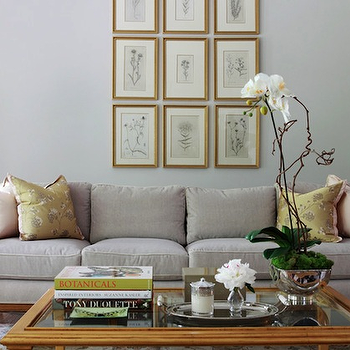 Light Gray Sofa, Transitional, living room, Morgan Harrison Home