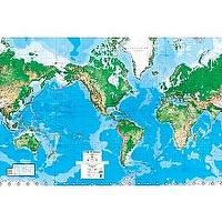 Wallpaper - World Map 8Ft x 13Ft Wall Mural - Environmental Graphics - Toys - world, map, mural