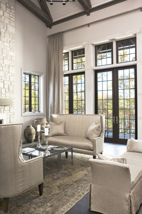 Steel French Doors Transitional Living Room Sherwin Williams Anew Gray