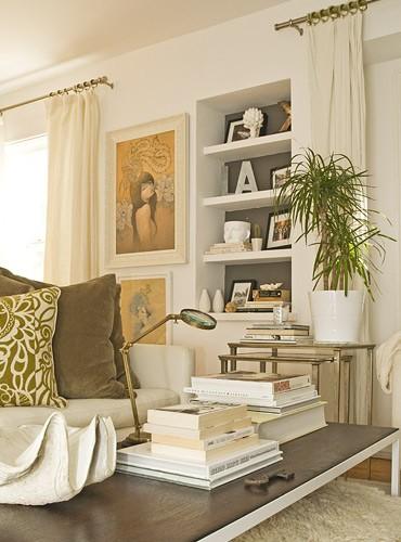 Built In Bookshelf Transitional Living Room Amber