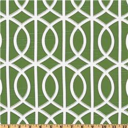 Dwell Studio Bella Porte Watercress, Discount Designer Fabric, Fabric.com