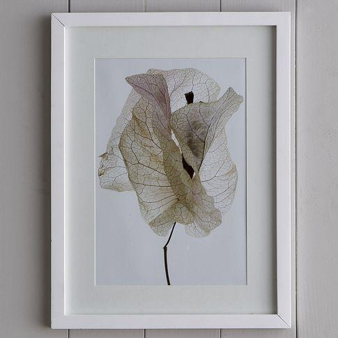 Art/Wall Decor - Clinton Friedman Wall Art - Bougainvillea | west elm - clinton friedman, wall, art, bougainvillea