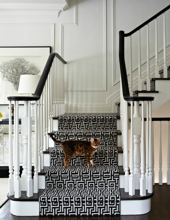 Greek Key Stair Runner, Transitional, entrance/foyer, Virginia Macdonald Photography