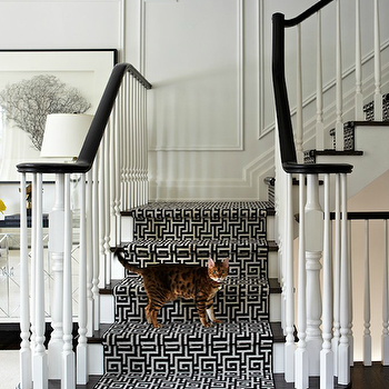 Virginia Macdonald Photography - entrances/foyers - decorative, wall moldings, glossy, black, staircase, handrail, glossy, black, stair treads, glossy, white, wood, balusters, white, black, Greek key, fretwork, stair runner, greek key stair runner, black and white stair runner, black and white greek key stair runner,
