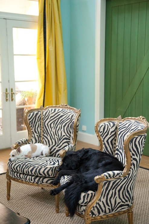 Marmalade Interiors - living rooms - Benjamin Moore - Waterfall - doggies, turquoise, blue, walls, yellow, silk, drapes, black, velvet, fretwork, Greek key, trim, green, barn door, gold, French, chairs, zebra, fabric, sisal, rug, zebra chairs, bergere chairs, zebra bergere chairs,