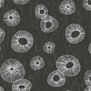 Curiouser & Curiouser! Wallpaper in Black by York