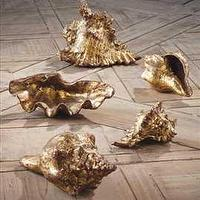 Decor/Accessories - Gold Leafed Shells - gold, leafed, shells