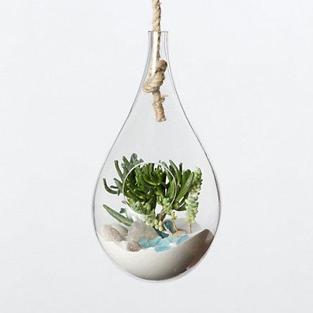 Hanging Drop Terrarium Terrain