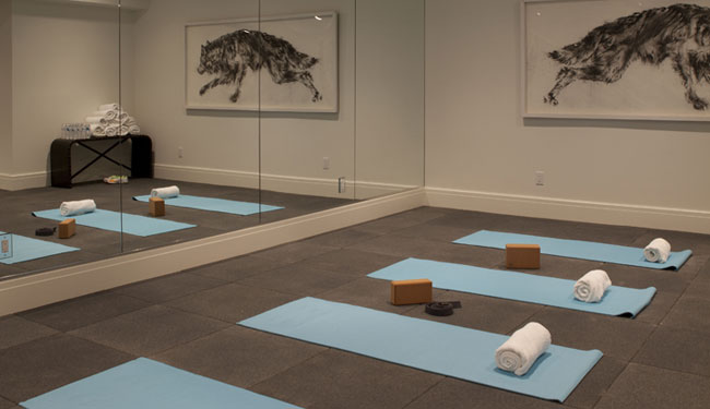 Floor to Ceiling Mirror - Contemporary - basement - Milton Development
