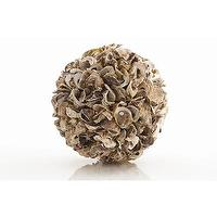 Decor/Accessories - ARTERIORS Oyster Shell Sphere | Wayfair - oyster, shell, sphere,
