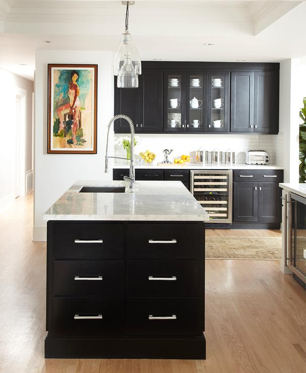 Black kitchen contemporary kitchen benjamin moore for Black shaker kitchen cabinets