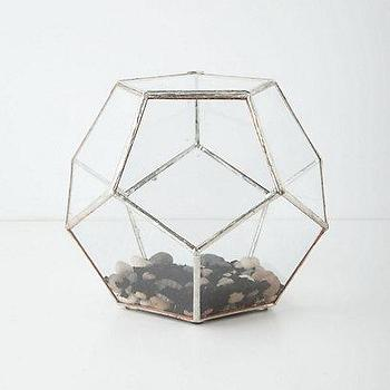 Decor/Accessories - Terrarium Kit - Anthropologie.com - terrarium kit, faceted glass terrarium, modern terrarium,