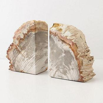 Decor/Accessories - Petrified Wood Bookends I Anthropologie.com - petrified wood bookends, unique bookends, sliced petrified wood bookends,