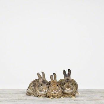 Art/Wall Decor - Bunnies - Sharon Montrose I The Animal Print Shop - baby animal nursery art, baby animal nursery photography, rabbit photography, bunny photography,