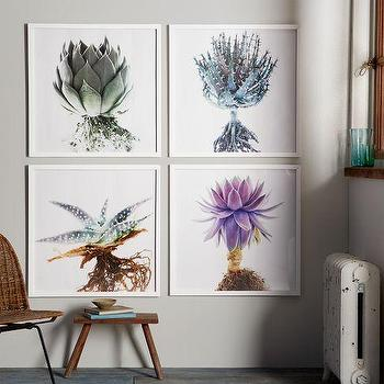 Art/Wall Decor - Clinton Friedman Wall Art | west elm - floral art, floral wall art, framed floral art, close up floral art, close up floral framed art,