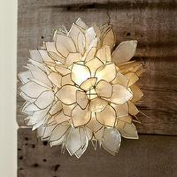 Lighting - Capiz Sconce | Pottery Barn - capiz sconce, capiz shell sconce, capiz wall sconce,