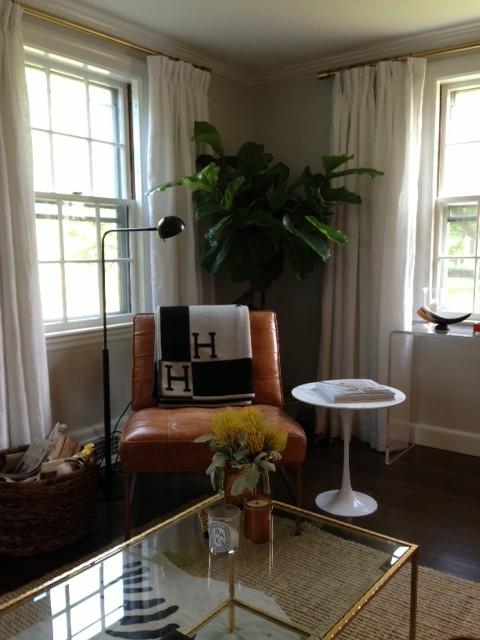 Hermes Blanket Transitional Living Room Benjamin