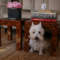 Grant K. Gibson - living rooms - linen sofa, faux tortoise shell end table, faux tortoise shell side table, stacked books, peonies, black planter, greek key pillow, braided jute rug, jute rug, chunky jute rug, modern faux tortoise shell table, greek key trim, pillow with greek key trim,