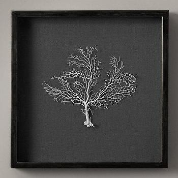 Art/Wall Decor - Preserved Sea Fan with Grey Mat I Restoration Hardware - sea fan wall decor, framed white sea fan, preserved sea fan framed, sea fan shadowbox,